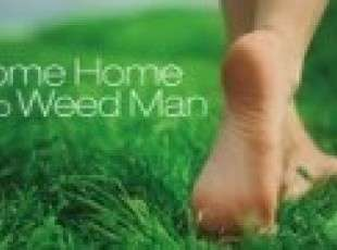 Weed Man Lawn Care Port Elgin