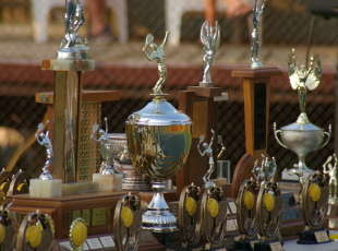 Club championships in August