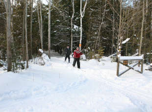 MacGregor Point Provincial Park Cross Country Skiing
